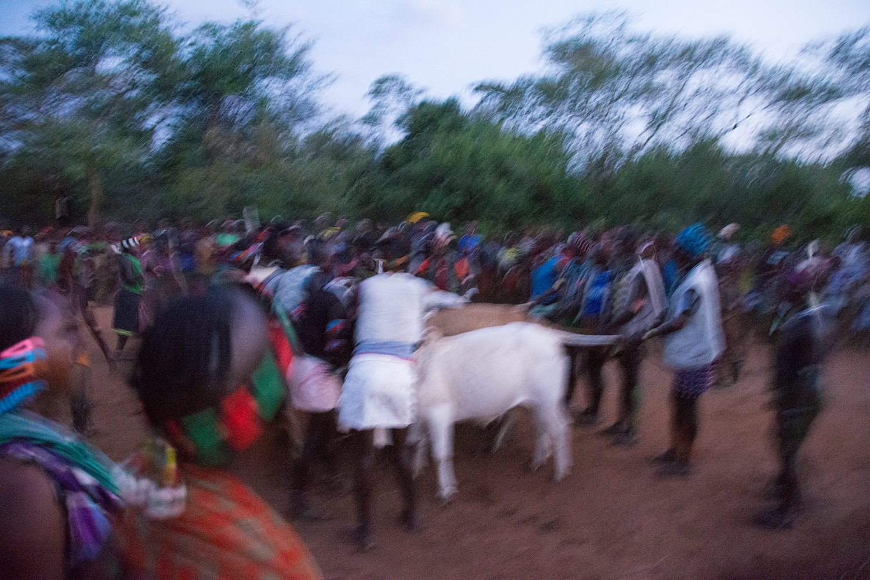 牛飛びの儀式