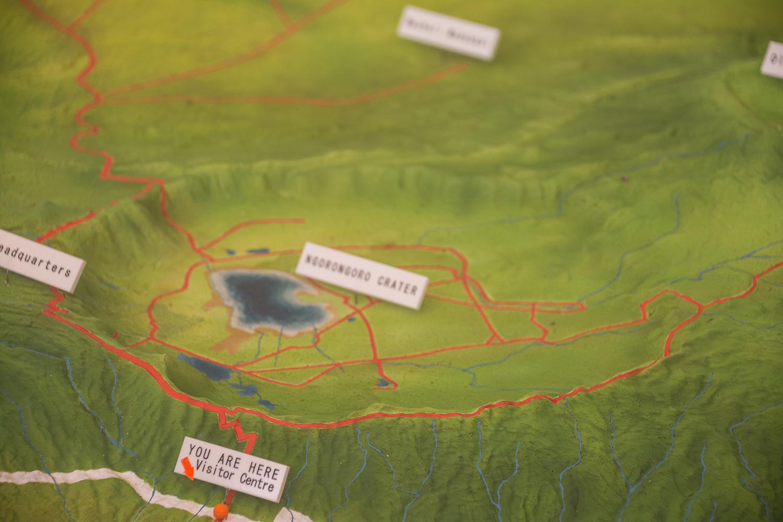 ンゴロンゴロ保全地域の画像 p1_17