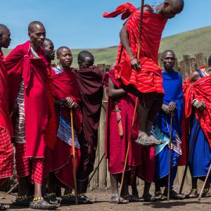 ンゴロンゴロ保全地域の画像 p1_36