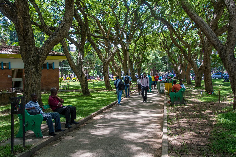 ジンバブエの代々木公園