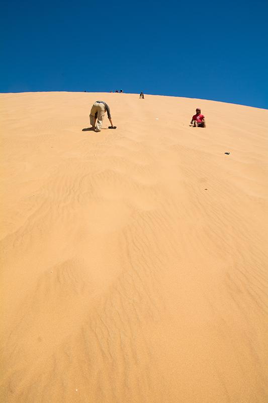 ナミブ砂漠DUNE7