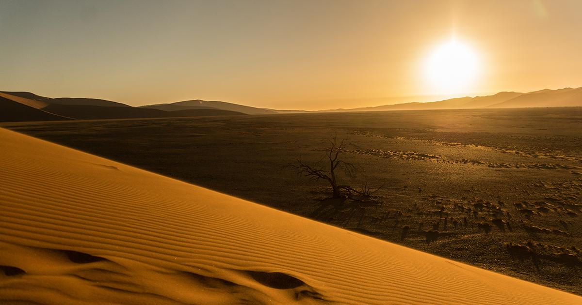 ナミブ砂漠の大砂丘